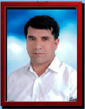 Mehmet Selim YILDIZ
